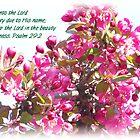 Blooming tree by Kadava