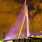 Erasmus Bridge Rotterdam by Martijn Budding