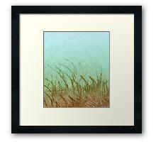 Sea Me Framed Print