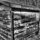 Shed in Jerome Arizona by Roger Passman