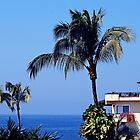 Beautiful Sunny Puerto Vallarta by Swede