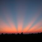 Good Night Sunshine-Crepuscular Rays by mnkreations