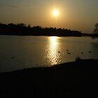 Sunset by nfsnyc