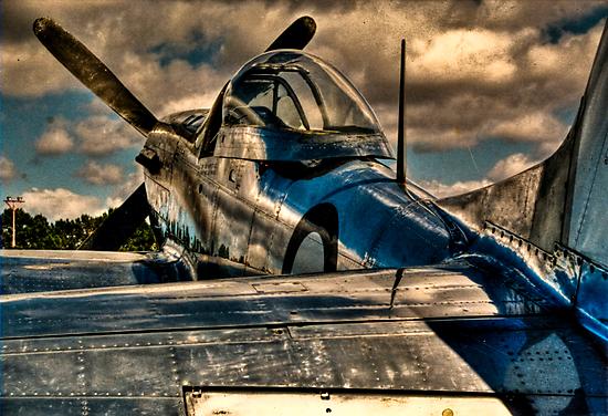 P-51 Mustang by Alistair Wilson