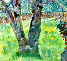 The Old Tulip Tree by C J Lewis