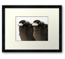 Mirth And Joy Framed Print