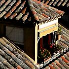 Rooftop window in Toledo, Spain by Elana Bailey
