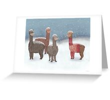 Winter Show Off Greeting Card