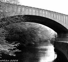 #321                     Bridge Over Branch Brook by MyInnereyeMike