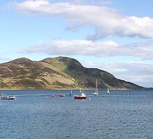 Holy Isle panorama by Fiona MacNab