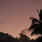 cloudy sunset... by xXDarkAngelXx