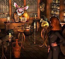 The Magic Shop by Maylock