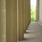 Columns by Christina Reid