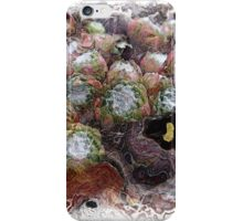 The Atlas Of Dreams - Color Plate 75 iPhone Case/Skin