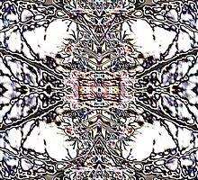 The Cross... by kenspics