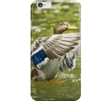 Water-play iPhone Case/Skin