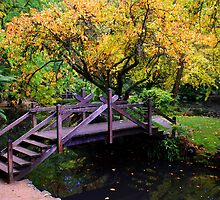 Foot bridge in Autumn by KeepsakesPhotography Michael Rowley