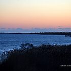 January 1st, 2015 Morning | Smith Point, New York by © Sophie W. Smith