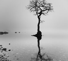 Loch Lomond in mist by Maria Gaellman