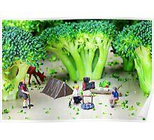 Camping Among Broccoli Jungles Poster