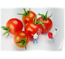 Chefs And Cherry Tomatoes Poster
