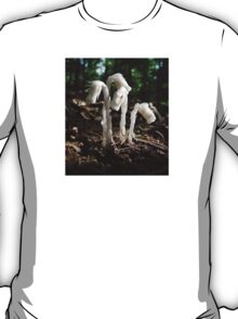 Indian Pipes In The Forest T-Shirt