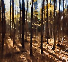 Forest And Trees by Barry W  King
