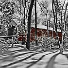 Sheard's Mill Covered Bridge 1873 by DJ Florek