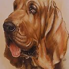 Bloodhound by BarbBarcikKeith