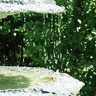 Fountain Magic by Rebekah  McLeod