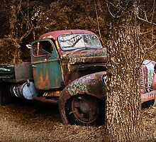 Rusting At End Of The Road by Maggiebee