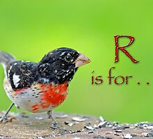 R is for . . . by Bonnie T.  Barry