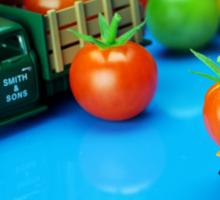 Tomato Business Sticker