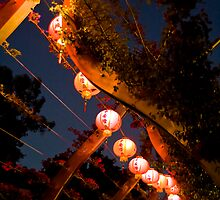 Lanterns by Matthew Stewart