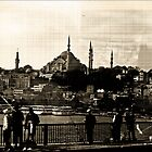 The Blue Mosque by Peter Evans