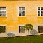 Wall with windows by Jan Prchal