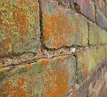 Multi-Colored Brick by kaylarenee