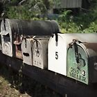 Mailboxes, Marin County CA by Kurt Weiske