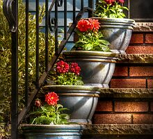 Four Pots by Mike  Savad