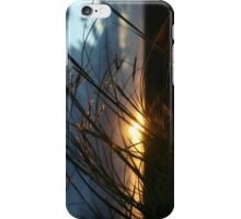 Highlighted Grass... Sunset in the Northern Cape Province, South Africa iPhone Case/Skin
