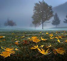 Twilight  by John Poon