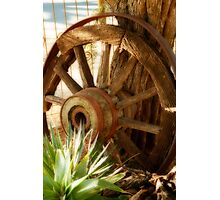 """Old Wagon Wheel""  (South Africa) Photographic Print"