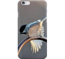 Birds in Motion V iPhone Case/Skin