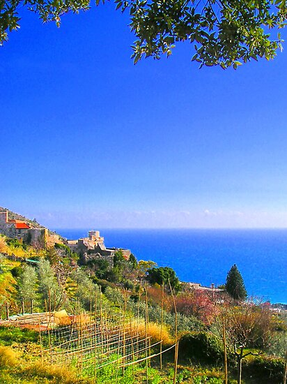 A corner on Liguria II. by Alessia Ghisi Migliari
