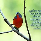 Eye has not seen nor ear heard what God has prepared . . . by Bonnie T.  Barry