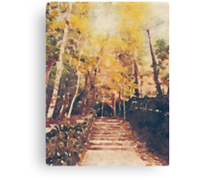 Stone Path Through a Forest in Autumn Canvas Print