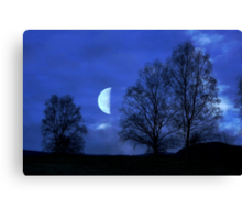Moon between Trees - JUSTART © Canvas Print