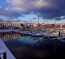 Fresh Snow In Bangor by Wrayzo