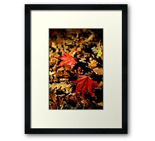 All Fall Down Framed Print