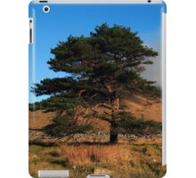 A Lonely Place iPad Case/Skin
